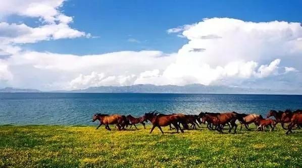 此外博斯腾湖盛产各种淡水鱼,是新疆最大的渔业生产基地.